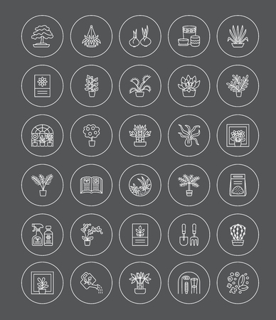 Vector line icons with house plants and flowers. Indoor flowering and green foliage plants. Gardening tools and accessories. Lucky bamboo, bonsai, fern, cactus, succulent, orchid, palm. Elements for interior decoration. Illustration