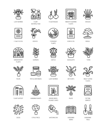 A Vector line icons with house plants and flowers. Indoor flowering and green foliage plants. Gardening tools and accessories. Lucky bamboo, bonsai, fern, cactus, succulent, orchid, palm.