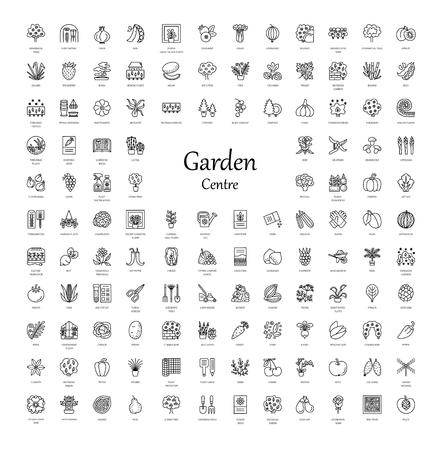 ベクトル線アイコン野菜、ガーデン ツール、木、低木、家の植物。園芸用品センターの要素。屋内と屋外の植物の異なった様式。バラ、種子、果実  イラスト・ベクター素材