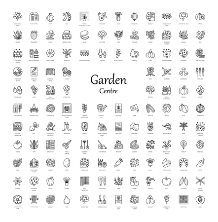 Vector line icons with vegetables, garden tools, trees, shrubs and house plants. Garden centre elements. Different styles of indoor and outdoor plants. Roses, seeds, berries, grasses, herbs, lawn, rockery, conifer, fruit trees.