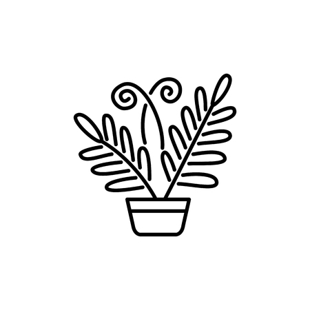 Black & white vector illustration of fern with leaves in pot. Decorative home plant in container. Line icon of indoor plant for conservatory & terrarium. Isolated object on white background.