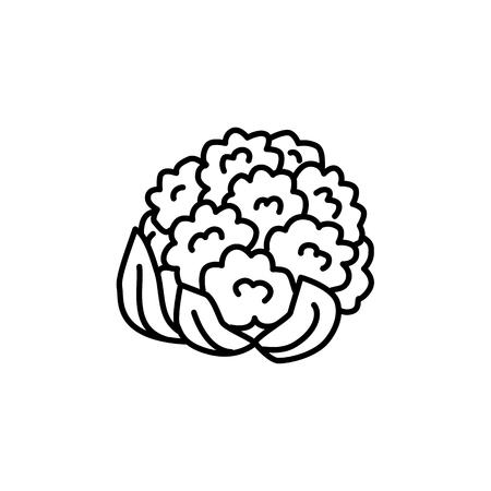 Illustration vectorielle noir et blanc de la tête de chou-fleur. Icône de la ligne de légumes frais de chou biologique avec des feuilles. Nourriture végétalienne et végétarienne. Ingrédient alimentaire santé. Isolé sur fond blanc.
