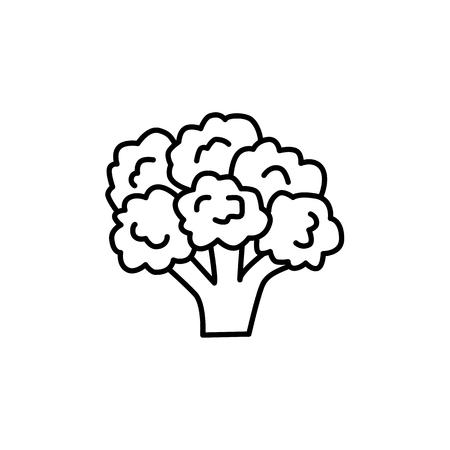 Illustration vectorielle noir et blanc de la tête fleurie du légume brocoli. Icône de la ligne de légumes frais de chou bio. Nourriture végétalienne et végétarienne. Ingrédient alimentaire santé. Isolé sur fond blanc. Vecteurs