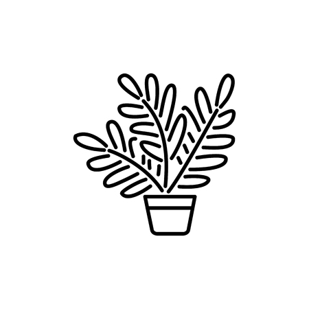 Black & white vector illustration of fern with leaves in pot. Decorative home plant in container. Line icon of indoor green foliage plant for conservatory & terrarium. Isolated object on white background.
