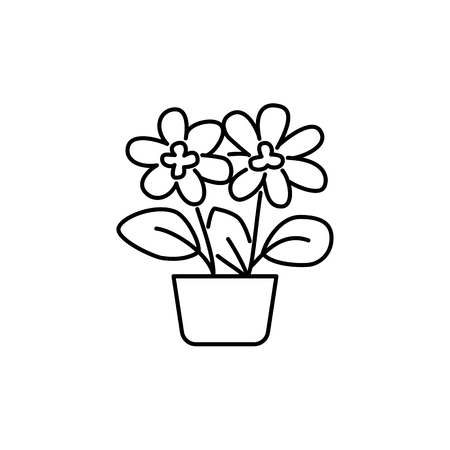 Black & white vector illustration of flowering plant with flowers, leaves in pot. Decorative home plant in container. Potted houseplant for office. Isolated object on white background. Illustration