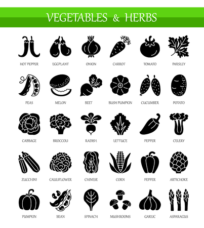 Vector flat icons with vegetables and herbs. Healthy lifestyle. Vegan & vegetarian food. Different kinds of veggies. Isolated objects on white background