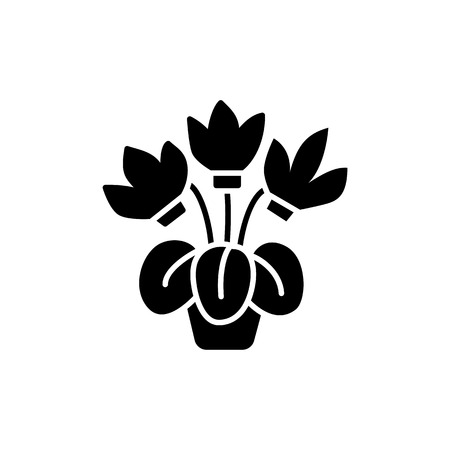 Black & white vector illustration of cyclamen with flowers & leaves in pot. Flat icon of decorative flowering home plant in container. Isolated object on white background