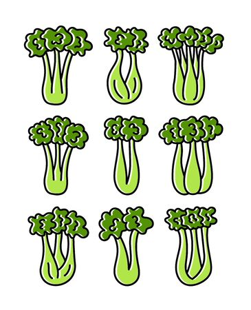 Vector illustration of green celery stalks with leaves. Line flat icon set of fresh organic celery sticks. Isolated objects on white background