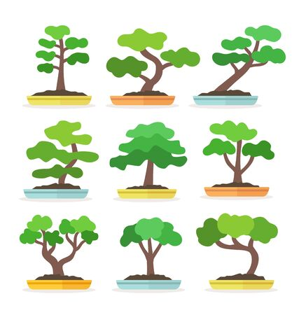 Japanese bonsai tree. Flat icon set. Small garden plants with leaves in the pots. Decorative houseplants isolated on white background. Vector illustration