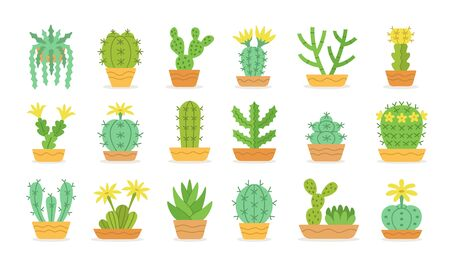 Different types of cactus in pots. Desert plants with flowers. Cute cacti collection. Isolated objects on white background. Vector illustration.