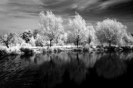 Infrared View Stock Photo