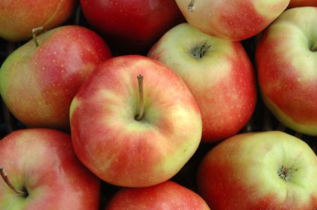 sappy: close-up red apples Stock Photo