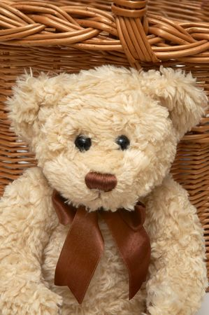 favourites: Teddy with the basket on background