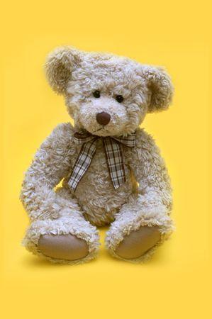 favourites: Teddy Bear