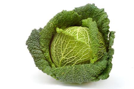 Cabbage Stock Photo - 285365