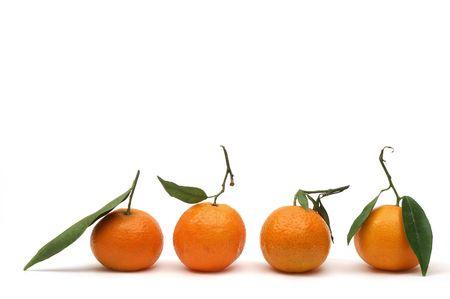 Mandarins photo
