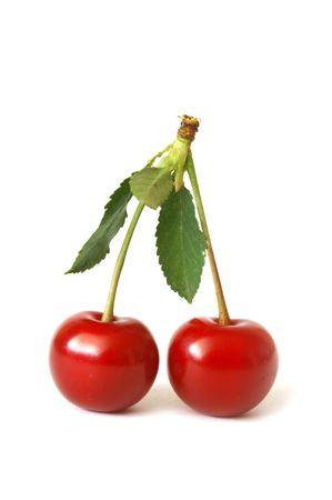 sappy: Cherry