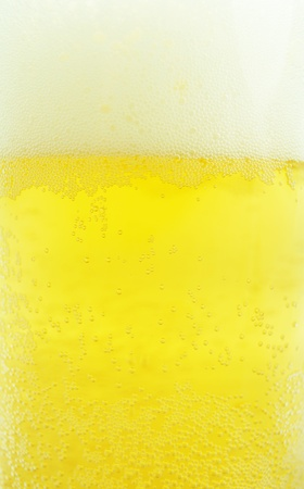 Beer background  Stock Photo - 10333868