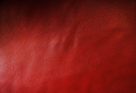 red leather texture: Vintage book cover