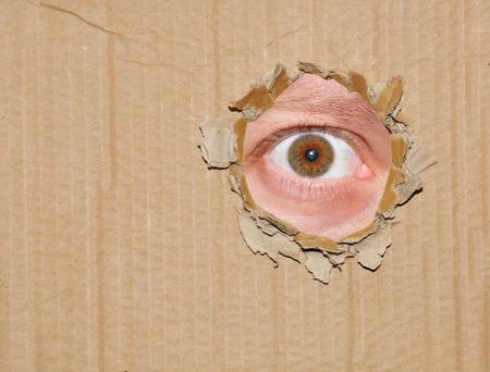zeugnis: Eye Spionage