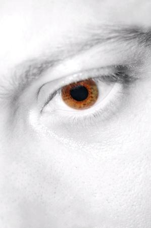 Eye detail Stock Photo - 10521516
