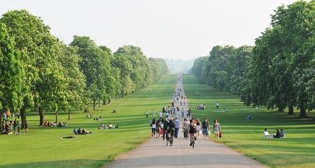 hacer footing: Gran Parque de Windsor Foto de archivo