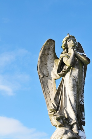 Angel praying Stock Photo - 10595957