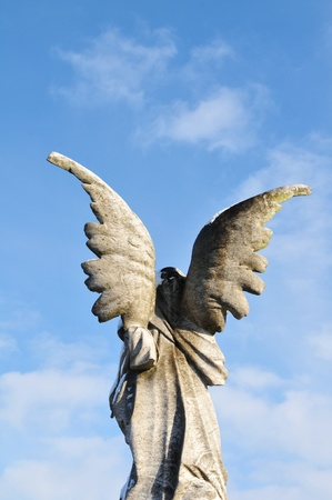 Back view of an stone angel photo