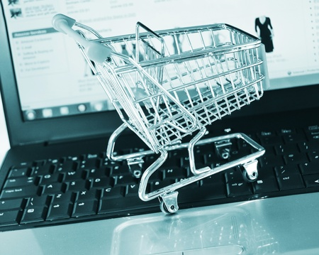 Shopping online  Stock Photo - 10629513