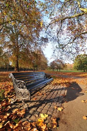 Bench in park Stock Photo - 11935487