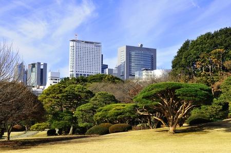 Tokyo, Japan - 28 Dec, 2011: Tokyo skyline seen from the Shinjuku Gyoen National Garden in winter