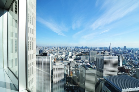 scapes: Tokyo, Japan - 28 Dec, 2011: Aerial view of the Japanese capital city seen from the  Metropolitan Government Building (Tokyo  City Hall)