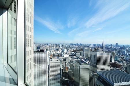 Tokyo, Japon - 28 décembre 2011: Vue aérienne de la capitale japonaise vu de la Metropolitan Government Building (Tokyo City Hall)