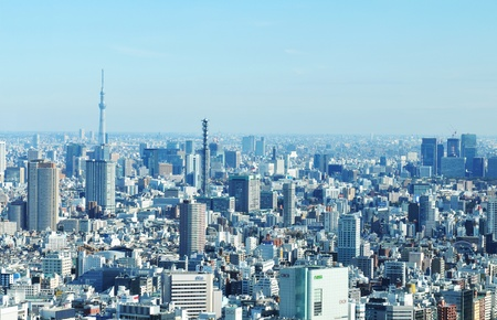 Tokyo, Japan - 28 December, 2011: Aerial view of Tokyo, the largest city in the world Stock Photo - 12571235