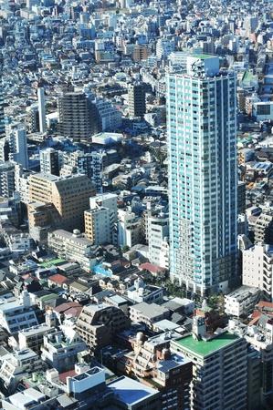 suburban street: Tokyo, Japan - 28 December, 2011: Aerial view of Tokyo suburbs