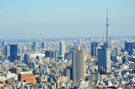 Tokyo, Japan - 28 Dec, 2011: Aerial view of the Japanese capital city seen from the Tokyo Metropolitan Government building Editorial