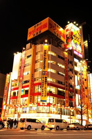 Tokyo, Japan - 28 December, 2011: Night view of Akihabara - electric town, major commercial district of Tokyo Stock Photo - 13118838