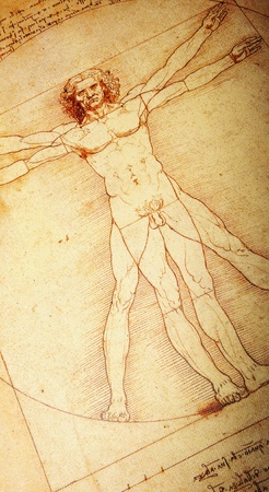 Rome, Italy - 30 March, 2012: Replica of the famous Vitruvian Man drawing created by Leonardo da Vinci