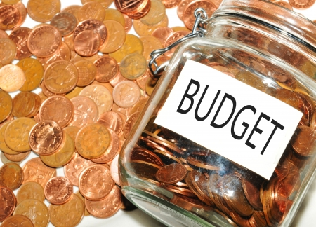 taxes budgeting: Budget