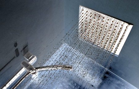 head stones: Modern ceiling shower