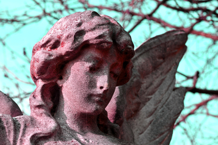 angel cemetery: Close up of stone angel in the cemetery