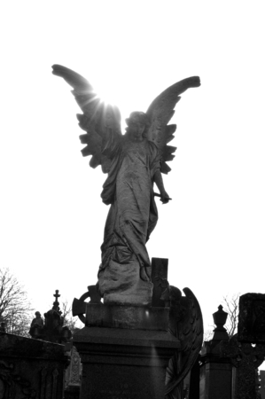 Close up of stone angel in the cemetery