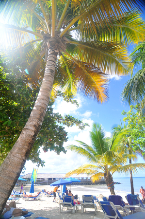 st lucia: SAINT LUCIA, CARIBBEAN - DECEMBER 10, 2014: Tourists relax by the sea in exotic resort in Saint Lucia, Caribbean Editorial