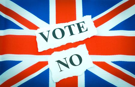 sceptic: Vote NO campaign concept regarding the UKEU referendum