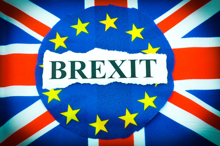 sceptic: Brexit UK EU referndum concept with flags and topical message