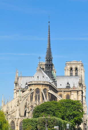 notre dame: Architectural panorama of the Notre Dame cathedral in Paris, France