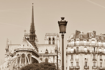 notre dame cathedral: Architectural panorama of the Notre Dame cathedral in Paris, France