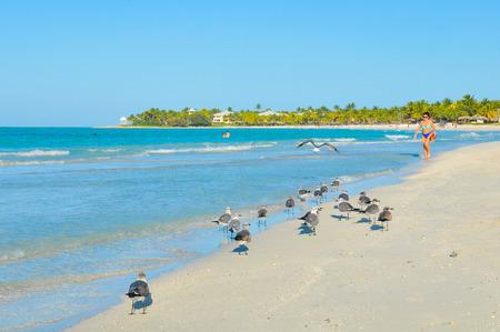 Varadero, Cuba - December 15, 2016: Tourists walk on the exotic beach of Varadero, Cuba