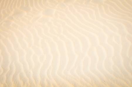 Abstract background with dunes or sand texture Stock Photo