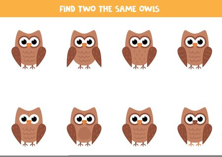 Find two the same cartoon owls. Educational logical game for kids. Cute vector picture of brown owl.